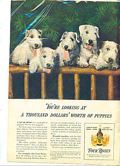Four Roses whiskey ad (Image1)