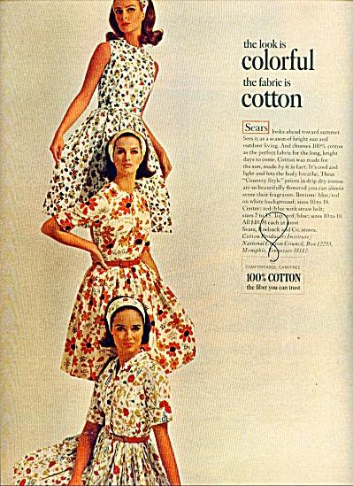 1965 SEARS AD Wilhelmina Veronica Hamel  +++ (Image1)
