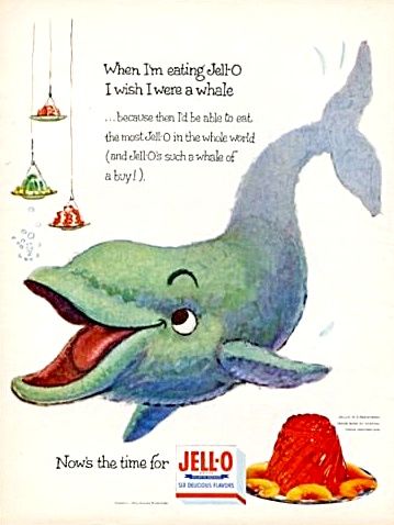 1954 When I'm Eating Jell-o I Wish I Were A Whale Print