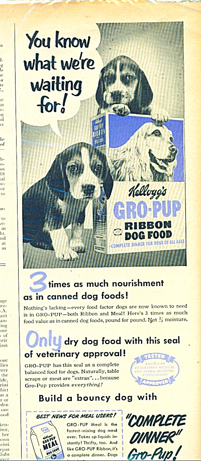 1951 Kellogg's Gro Pup dog food AD BEAGLES (Image1)
