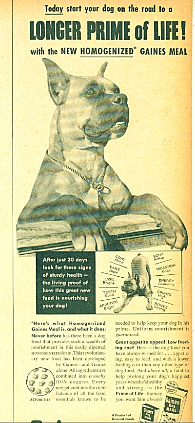 Gaines dog foot - 1953 (Image1)