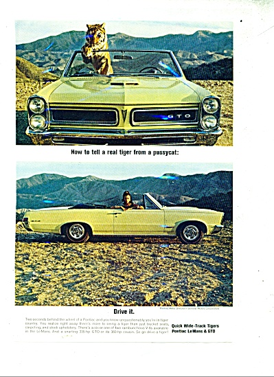 Pontic LeMans & GTO cars ad 1965 (Image1)