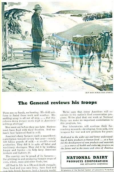 1948 National Dairy AD General Troop of Cows (Image1)