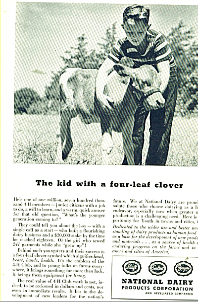 1946 National Dairy Products AD 4H BOY - CALF (Image1)