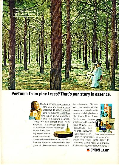 Union Camp Paper Corporation ad 1966 (Image1)