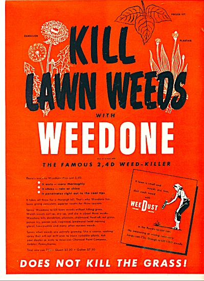 Weedone weed killer ad 1947 (Image1)