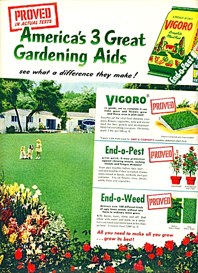 1952 - Vigoro lawn food ad (Image1)