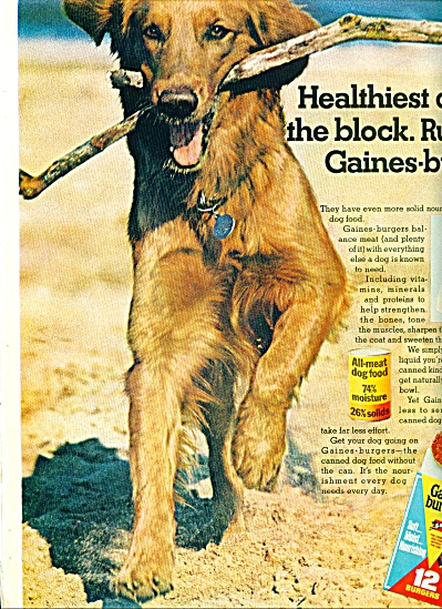 1945 - Gaines burgers for dogs ad (Image1)