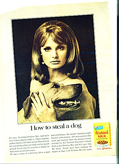 1966 FRISKIES AD ELEGANT MODEL STEAL DOG (Image1)