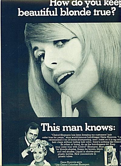 1967 - Clairol shampoo ad (Image1)