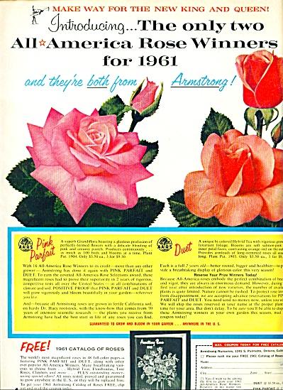 1961-Armstrong nurseries ad (Image1)