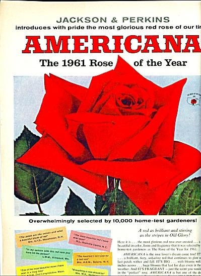 1961 -  Jackson & Perkins roses ad (Image1)