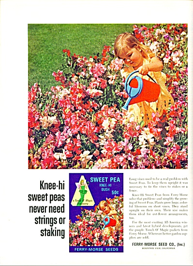 1967 -  Ferry-Morse Seed Co. ad (Image1)
