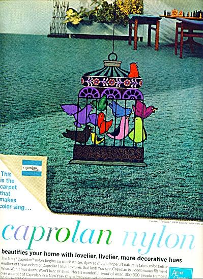 1962 - caprolan nylon ad (Image1)