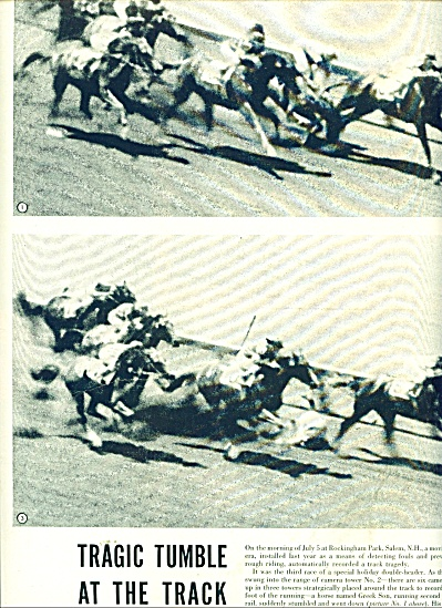 Fatal Horse Race accident at Rockingham (Image1)