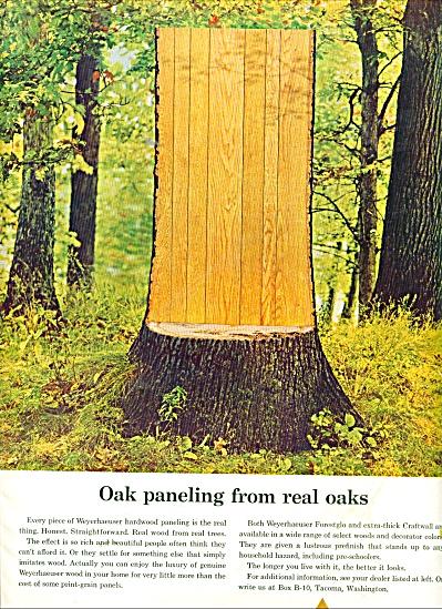 1964 Weyerhaeuser OAK hardwood paneling ad (Image1)