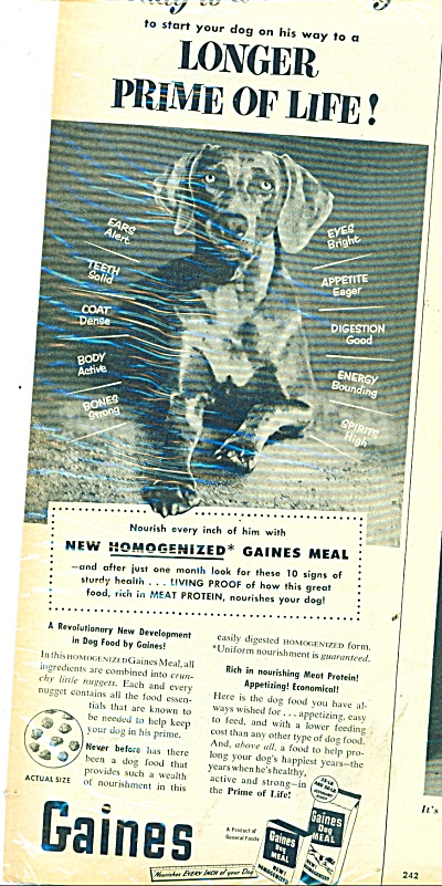 Gaines dog meal ad 1953 (Image1)
