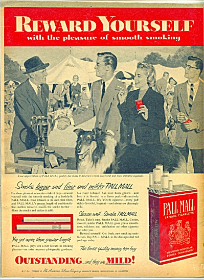 1955 PALL MALL Cigarettes AD Collie DOG SHOW (Image1)