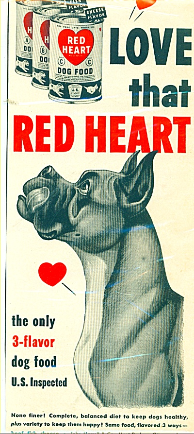 1951 Red Heart Dog Food Ad Boxer (Image1)