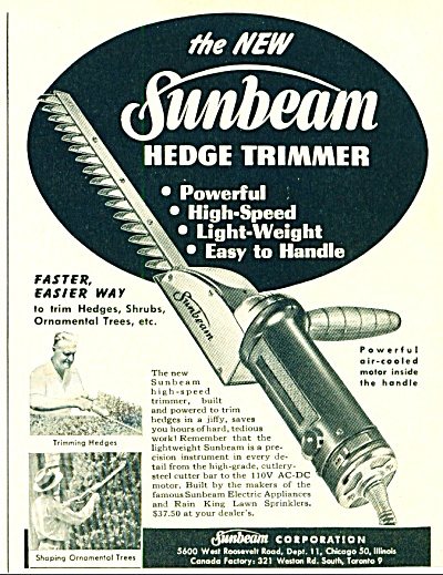 Sunbeam hedge trimmer ad (Image1)