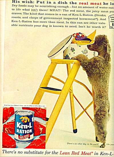 1961 Ken-L-Ratio Dog Food AD CUTEST POODLE (Image1)