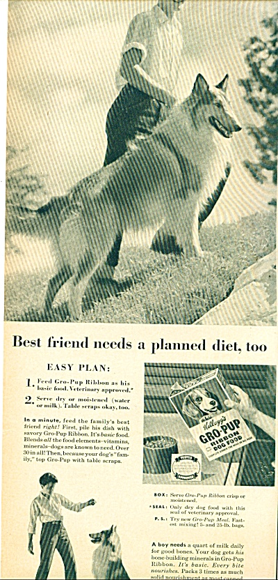 Kellogg's gro pup ribbond dog food ad (Image1)