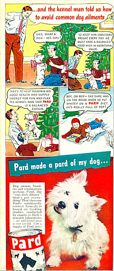 1947 PARD Dog Food AD Cartoon Terrier (Image1)
