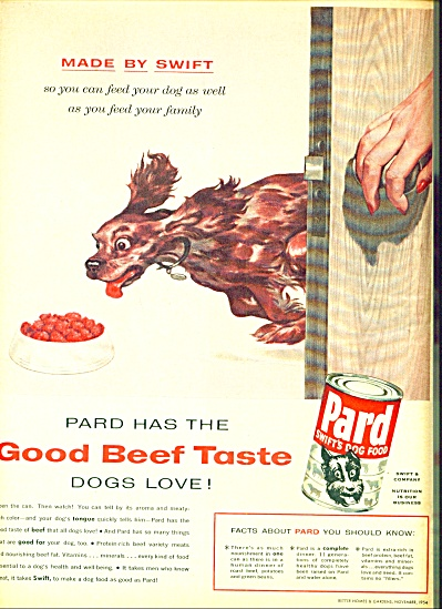 1954 Pard Swift's dog food AD RACING DOG ART (Image1)