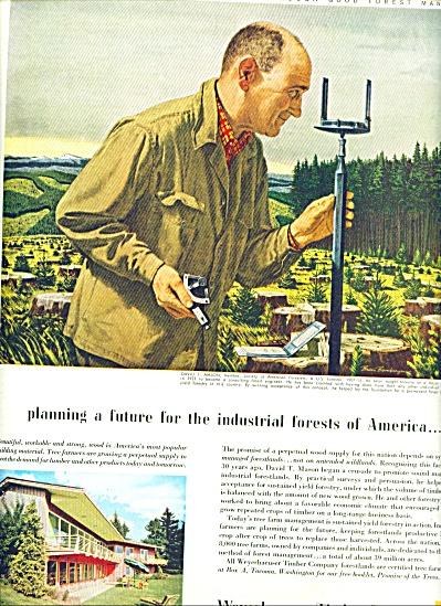 1956 Weyerhaeuser Timber Company AD (Image1)