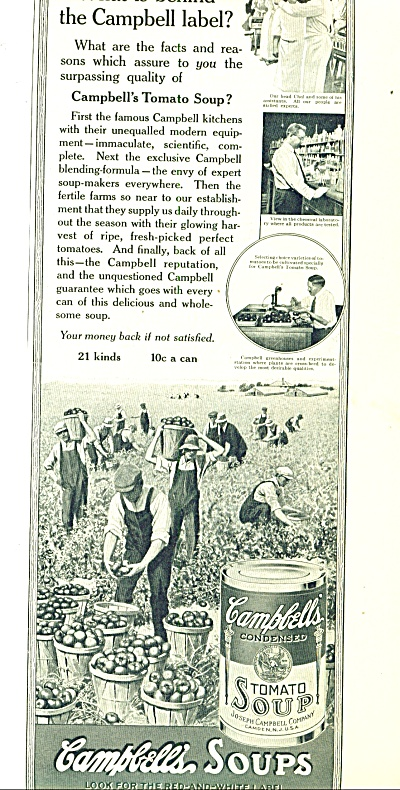 1914 Campbell's Soup AD PICKING TOMATO ART (Image1)