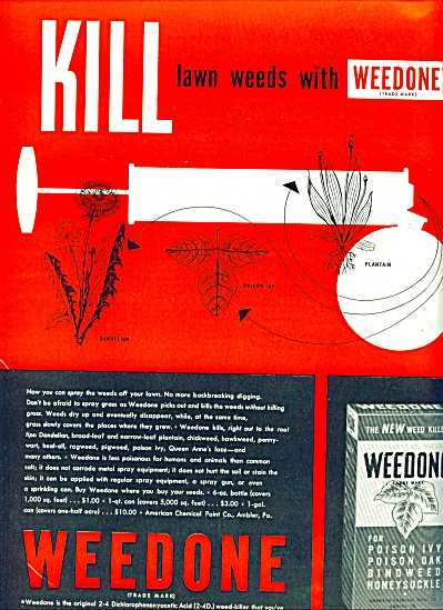 Weedone - kills lawn weeds ad 1946 (Image1)