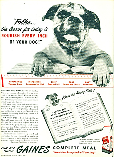 1946 Gaines Dog Food AD UGLIEST DOG (Image1)