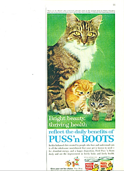 1961 - Puss 'n Boots Cat food ad BRIGHT BEAUTY (Image1)