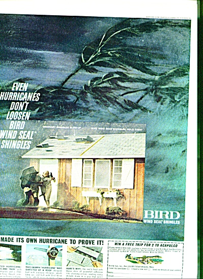 1962  - Bird wind seal shingles ad (Image1)
