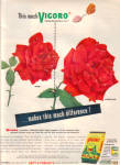 1949 VIGORO RED ROSE Lawn Food AD