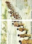 Click to view larger image of BUSHMEN OF THE KALAHARI  story 1963 (Image1)