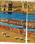Click to view larger image of Threatened Treasures of the NILE story 1963 (Image3)