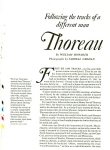 Click to view larger image of HENRY DAVID THOREAU  - 1981 (Image1)