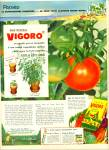 Click here to enlarge image and see more about item R3126: Vigoro ad -  1952