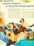 Click here to enlarge image and see more about item R7795: Puss 'n Boots  cat food ad SEAL POINT SIAMESE