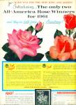 Click here to enlarge image and see more about item Z10972: 1961-Armstrong nurseries ad