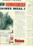 1952 -  Gaines Meal for dogs ad
