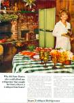 Click here to enlarge image and see more about item Z11929: 1969 -  Sears coldspot refrigerator -ANNE BAX