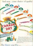 Click here to enlarge image and see more about item Z3732: Canada Dry beverages ad 1955
