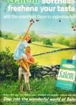 Click here to enlarge image and see more about item Z6258: Salem cigarettes ad