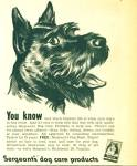 1950 Sergeant's DOG Care AD BLACK SCOTTY ART