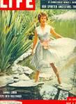 Click to view larger image of 1957 - SOPHIA LOREN  at peak of career (Image1)