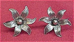 Beau Sterling Tropical Flowers Screw Earrings Vintage Nice (Image1)