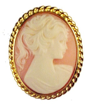 Coral Plastic Carved Cameo Pin Brooch in Goldtone Twist (Image1)