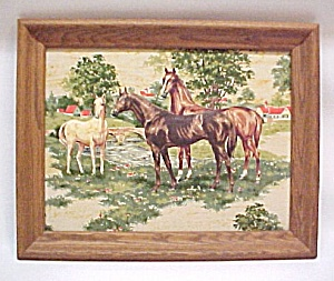 Horse Mare Colt Foul 3d 3 D Dimensional Framed Picture